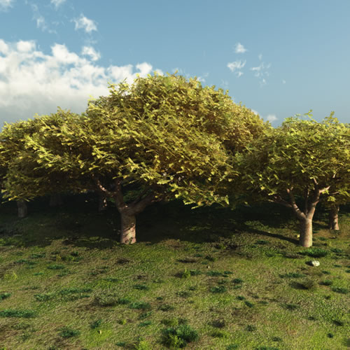 Noah's Ark - Cedar of Lebanon Trees in Vue Version
