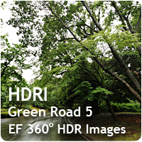 HDRI Green Road 05