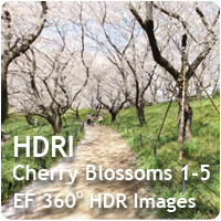 HDRI Cherry Blossoms 01-05 Pack
