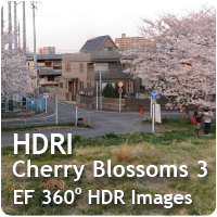 HDRI Cherry Blossoms 03