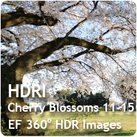 HDRI Cherry Blossoms 10-15 Pack
